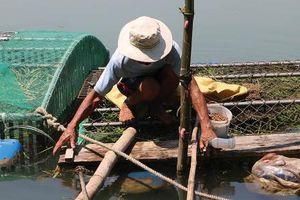 Người đàn ông bị điện giật tử vong ở lồng cá trên sông