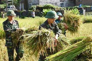 Lan tỏa giá trị 'Bộ đội Cụ Hồ - Bộ đội của dân' trong thời kỳ mới