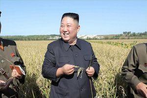 Ông Kim Jong Un hành động 'lạ' sau đàm phán Mỹ-Triều đổ vỡ