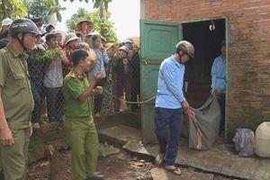 Đắk Lắk: Nhóm trộm đột nhập nhà dân phá két sắt 'cuỗm' 24 lượng vàng