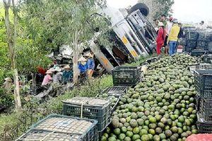 Hàng tấn trái cây đổ xuống đường, người dân giúp tài xế thu nhặt