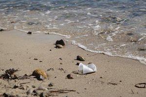 Rác thải nhựa có thể phân hủy nhanh hơn dưới ánh mặt trời