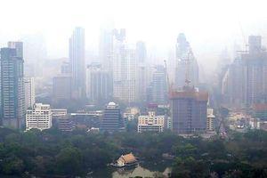 ASEAN hợp tác hành động vì môi trường