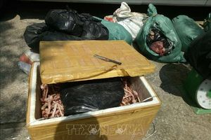 Phát hiện ô tô khách chở gần nửa tấn thực phẩm bẩn