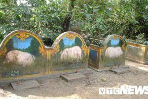 Chuyện ly kỳ về nghĩa địa heo quái thai ở Sóc Trăng