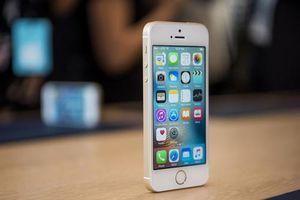 IPhone SE 2: Giá rẻ sẽ được ra mắt sớm hơn mong đợi