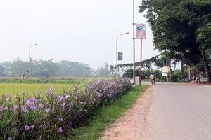 Hội Nông dân tích cực tuyên truyền xây dựng nông thôn mới