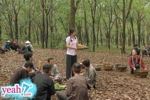 Bị soi nấu ăn 'sống nhăn' với cả mẹt rau muống chưa chín, Nhật Kim Anh nói gì?
