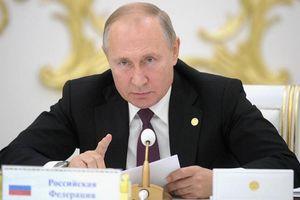 Tổng thống Putin: Ukraine không có khả năng lui quân ở Donbass