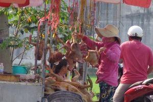 Bài 2: Thịt chó bán như… thịt heo và những nghịch lý