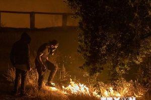 Mỹ: Cháy rừng lan rộng tại California gây nhiều thiệt hại