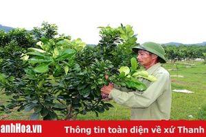 Huyện Như Thanh thực hiện có hiệu quả các chính sách dân tộc