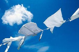 Cách tẩy vết bẩn trên quần áo trắng bằng nguyên liệu từ thiên nhiên