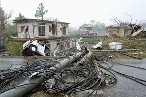 Thủ tướng gửi điện thăm hỏi Nhật Bản sau khi hứng chịu bão Hagibis