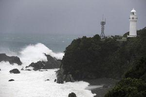 Tàu hàng bị siêu bão Hagibis đánh chìm ở vịnh Tokyo, chưa có thông tin 2 thủy thủ Việt Nam