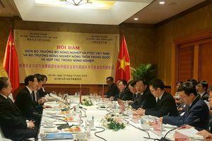 Trung Quốc muốn hợp tác với Việt Nam chống rầy nâu