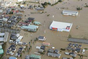 Bảo hộ công dân Việt Nam tại Nhật Bản trong bão Hagibis