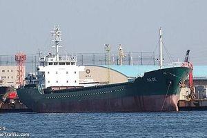 Tàu hàng Panama chìm ở vịnh Tokyo, 5 thủy thủ tử vong, 3 người mất tích