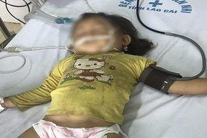 Trên đường đi học về, bé gái 3 tuổi bị ong đốt tử vong