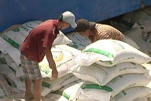 Bộ NN&PTNT nói gì khi giá gạo Việt thấp nhất 12 năm qua?