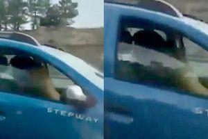 Cặp đôi mạo hiểm 'mây mưa' trong lúc lái xe để tìm cảm giác lạ