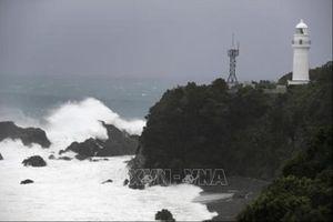 Vụ chìm tàu Panama trên vịnh Tokyo: Tìm thấy thêm 2 thi thể thuyền viên