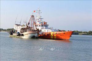 Cứu nạn và lai dắt tàu cá bị tràn nước có nguy cơ chìm về bờ