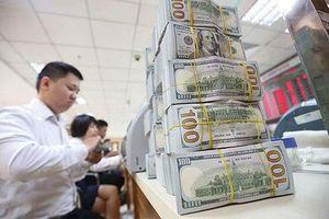 Việt Nam trả nợ công, nợ chính phủ đầy đủ, đúng hạn