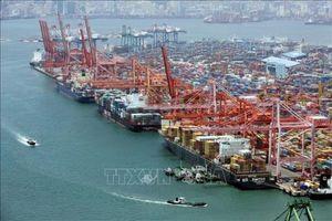 KDI: Nền kinh tế Hàn Quốc đối mặt nhiều trận 'gió ngược'