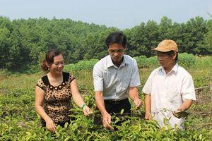 Bắc Giang: Giảm tỷ lệ hộ nghèo tại các vùng dân tộc thiểu số 3- 4%/năm
