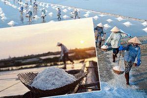 Trả lời kiến nghị về hỗ trợ bảo tồn phát triển nghề sản xuất muối phơi cát truyền thống ở Thái Bình