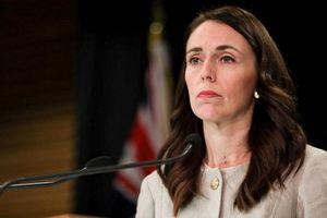 New Zealand thành lập lực lượng kiểm soát bạo lực trực tuyến