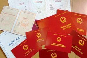 Nữ phó phòng Tỉnh ủy Đắk Lắk chưa học hết cấp 3?