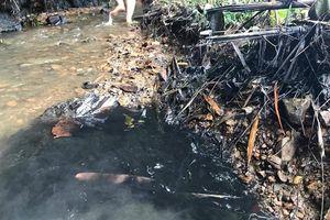 Phát hiện bể chứa có váng, Viwasupco vẫn cấp nước cho dân: 'Sống chết mặc bay'