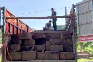 Liên tục phát hiện các vụ vận chuyển gỗ trái phép