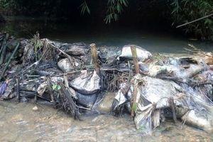 Hà Nội khuyến cáo người dân không nên ăn uống nước do Công ty Viwasupco cung cấp