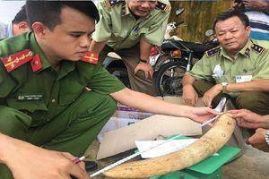 Phát hiện hàng chục kg vật phẩm nghi ngà voi giấu trong thùng xốp