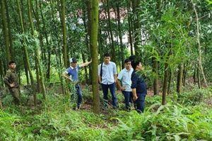 Bắc Giang: Phó chủ tịch UBND xã Nội Hoàng tử vong bất thường trên núi