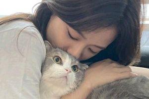 Ngọt ngào khoảnh khắc Jisoo âu yếm chú mèo của Lisa