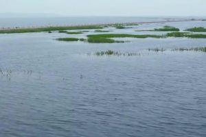 Choáng với con đường dưới nước chia đôi mặt hồ như trong phim viễn tưởng