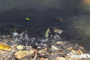 'Dầu lẫn vào trong nguồn nước mà không có thiết bị lọc rất khó xử lý'