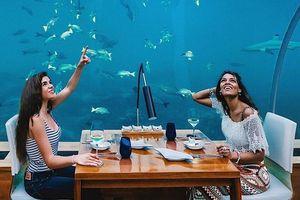 Nhà hàng dưới nước và những quán ăn độc lạ khắp thế giới