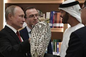 Ông Putin tặng chim ưng quý cho Thái tử UAE và nhận lại món quà bất ngờ