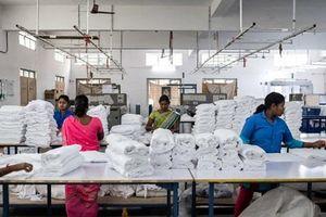 Kim ngạch xuất nhập khẩu của Ấn Độ giảm mạnh nhất trong 3 năm