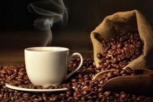 Giá cà phê hôm nay 16/10: Bất ngờ giảm 200 đồng/kg