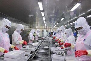 Dự thảo Luật Lao động (sửa đổi): 'Bỏ quên' lao động sáng tạo