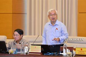 Ủy ban Thường vụ Quốc hội xem xét, quyết định thành lập một số đơn vị hành chính thuộc tỉnh Bắc Ninh