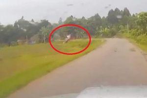 Clip: Tài xế chạy tốc độ cao vào cua gấp, ô tô lộn nhào lao xuống ruộng