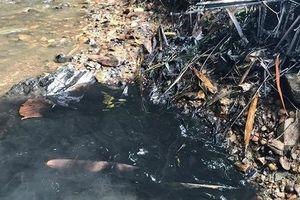 Nước sinh hoạt ở Hà Nội có tỷ lệ styren cao hơn bình thường: Loại chất này nguy hiểm thế nào?