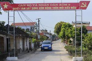Bình Định: Vai trò của Mặt trận trong xây dựng nông thôn mới